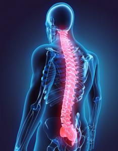 Image Spine